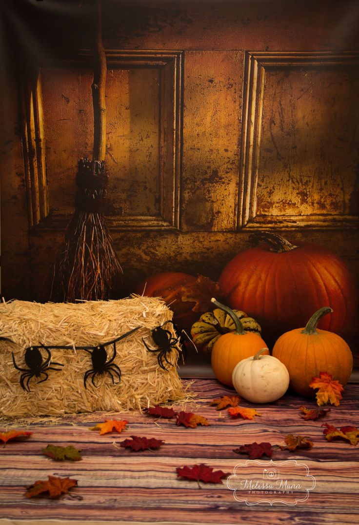 fallhalloween photography backdrop props - Halloween Backdrop