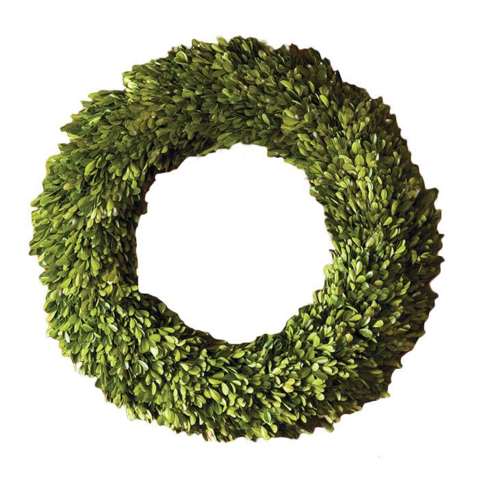 Preserved Boxwoods Preserved Wreath & Reviews   Joss & Main