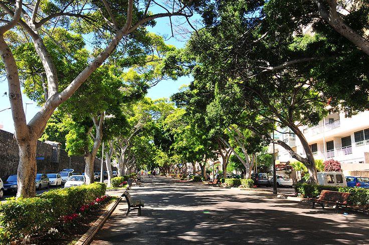 Santa Cruz de Tenerife, aux Canaries - My Sweet Escape