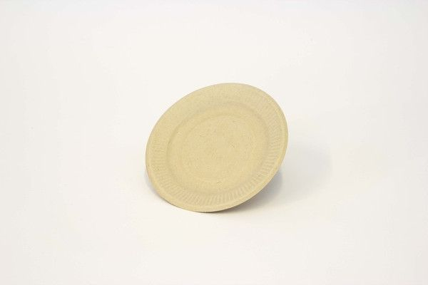Be Green Packaging #Biodegradable Plates - 6 inch can be microwaved frozen or heated & 9 best Biodegradable Plates images on Pinterest | Dinner plates ...
