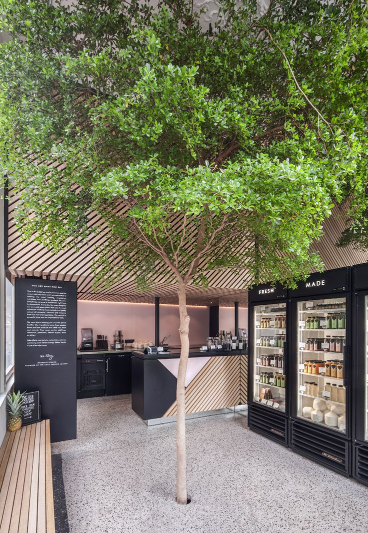 The Cold Pressed Juicery in Amsterdam. Stylish juice bar with wooden slatted seating, bright walls and a tree in the middle of the space!
