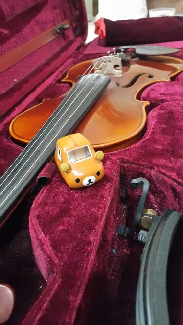 Rilakuma tomica in violin