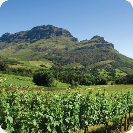The Simonsberg in all its glory