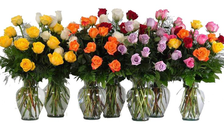 A beautiful bouquet of roses in any colour to recognize that special someone in your life. Order yours from Ottawa Flowers today!    Happy Valentine's Day!