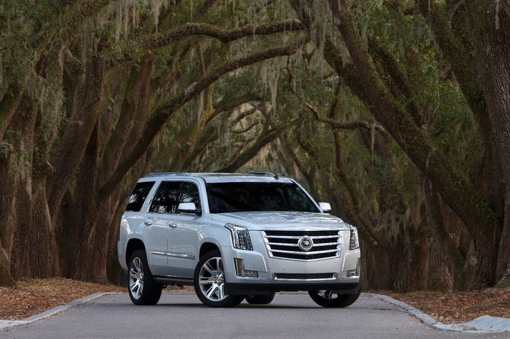 Make your own path in the next generation 2015 #Escalade.