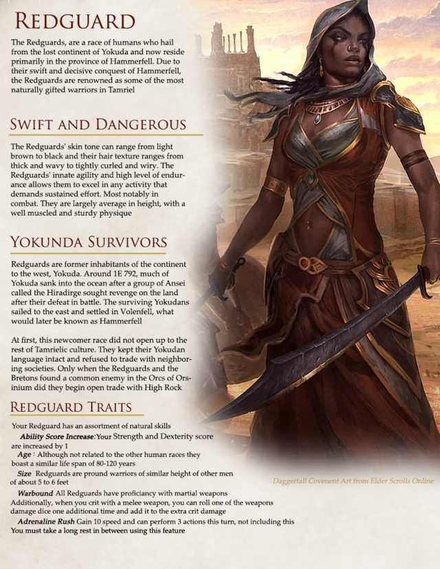 The Elder Scrolls races in D&D 5e for some upcoming stuff ...