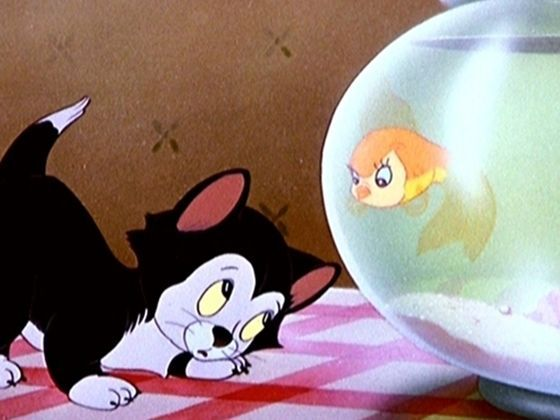 Are you really the Disney cat you think you are? Take this quiz to find out.