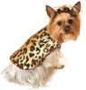 Designer Dog Clothes, Small Dog Clothing, Dog Carriers and More!