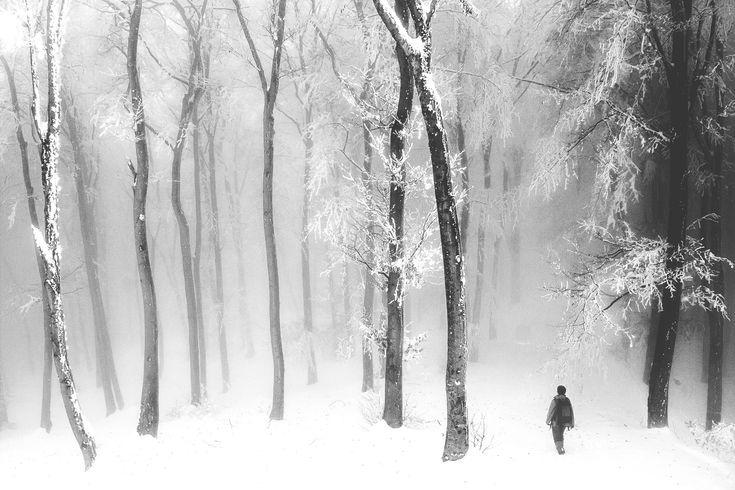 1X - Admiring the silence by serban
