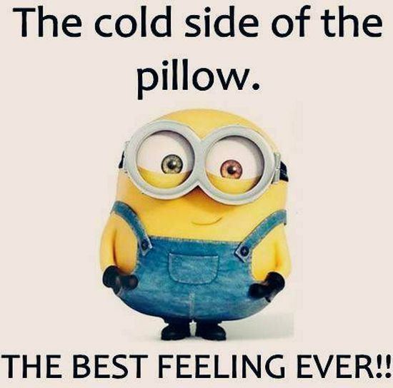 New Funny Minions Pictures 059