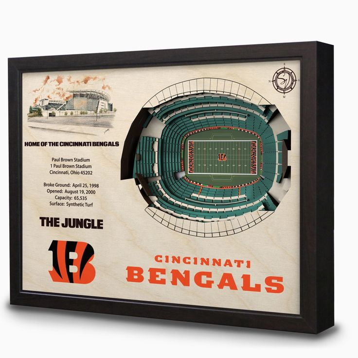 Cincinnati Bengals Paul Brown Stadium 3D View Wall Art