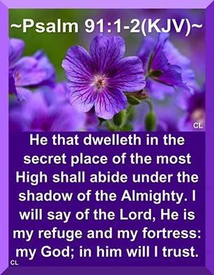 PSALM 91:1-2 He that dwelleth in the secret place of the most High shall abide under the shadow of the Almighty.