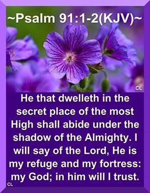 4de9c4bb8e7270c8a4db4ad029c9c871--scripture-verses-bible-quotes - Psalm 91:1 - Bible Study