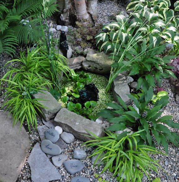 Best 25 mini pond ideas on pinterest small water for Pond shade ideas