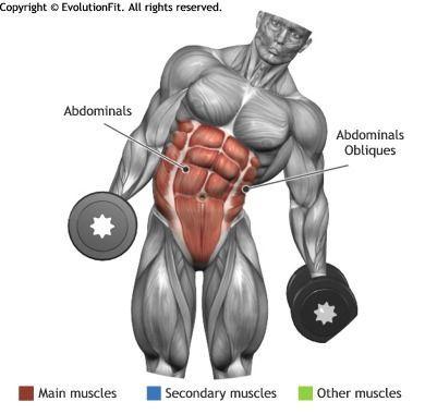 ABDOMINALS - PESA Curva lateral