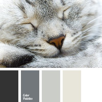 Warm shades of gray and beige will be relevant when planning bedroom decoration. Using these colors, you will create a harmonious interior, which will also.