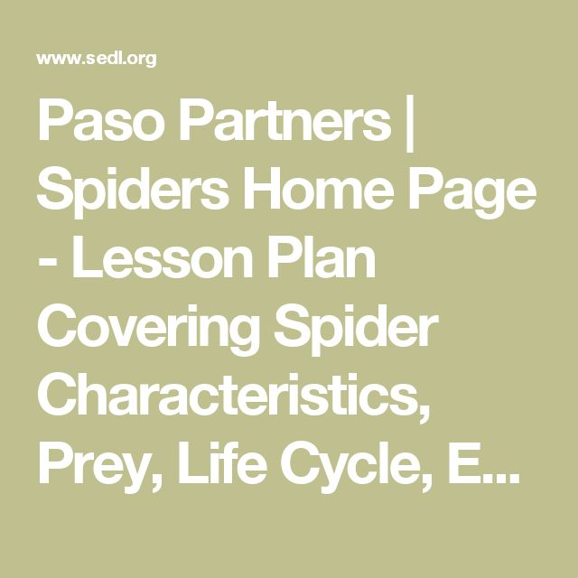 Paso Partners | Spiders Home Page - Lesson Plan Covering Spider Characteristics, Prey, Life Cycle, Enemies, Habitats, and Spanish Translations