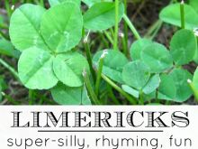 Writing Limericks: Anyone can write a super-silly poem with our limerick template