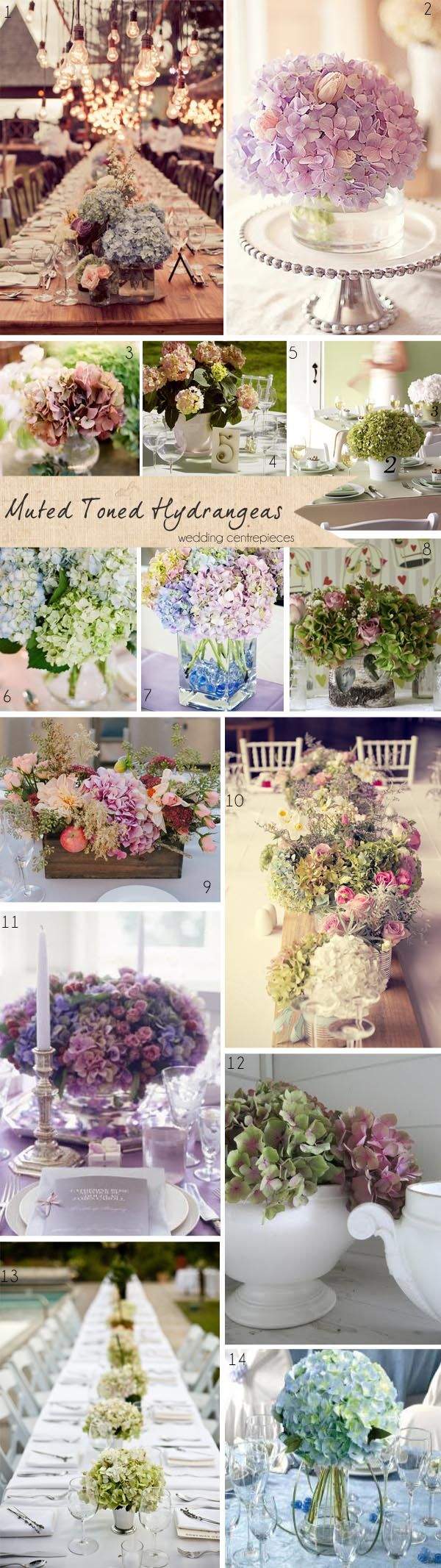 Muted Toned Hydrangeas ~ Get To Know Your Wedding Flowers