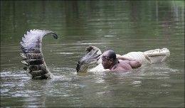 The Australian Crocodile Whisperer