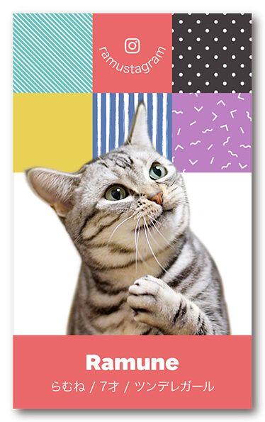 ペット名刺 猫デザイン 縦型025<br> オーダーメイド 猫グッズ (1個50枚入)