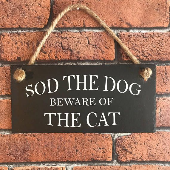 Beware of the cat Beware of the dog Funny dog sign. Dog