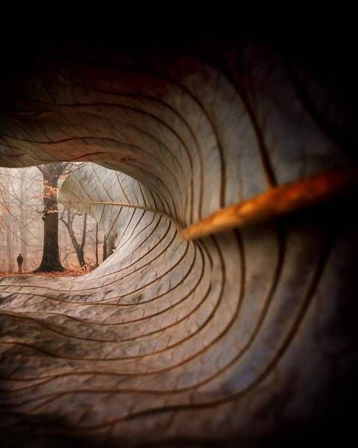 21 Extremely Creative Photos That Will Blow Your Mind