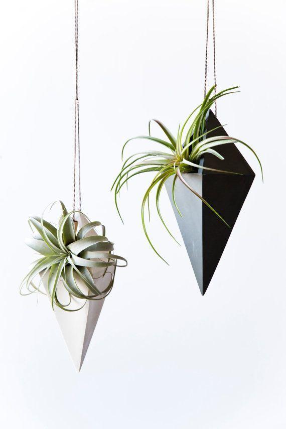 The Best Hanging Planters Interior Inspiration Pinterest