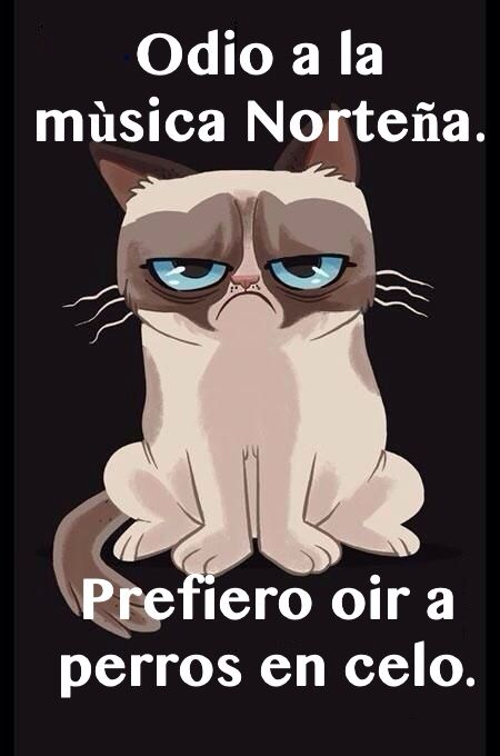 #grumpy cat, #gato, # cat, # norteñas, # grumpy cat meme Translation: I hate Norteña music. I would rather listen to dogs in heat .Note: norteña is a genre of music from the northern part of Mexico. Accordions are often used in the music.