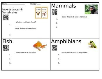 I created this investigation as an introduction to animal classification. It will take students on a question where they will learn the meaning of the following terms. Invertebrate vertebrate mammal fish amphibian reptile birds Students will have fun while they reserach and see colorful photos and answer