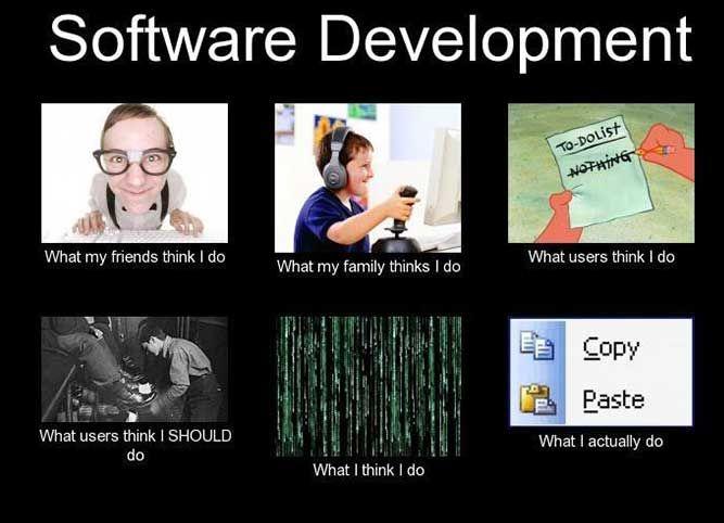 Software Development What Actually I Do Computer Memes Software Development Humor Nerdy Jokes