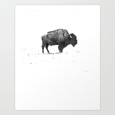 Buffalo Art Print by KClark Photography - $18.00 with a red frane