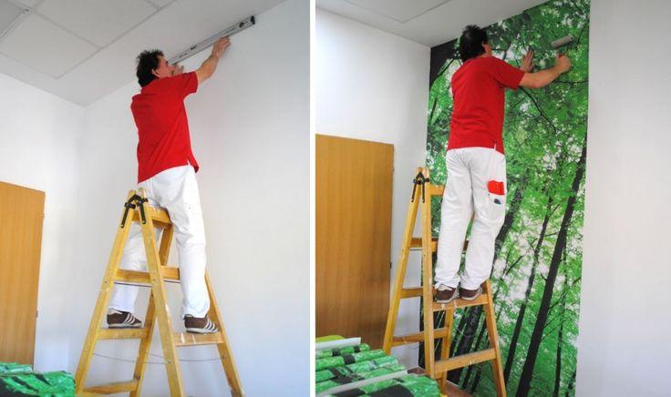 Cum arata sala de curs decorata cu fototapet la Farmacologie UMF?