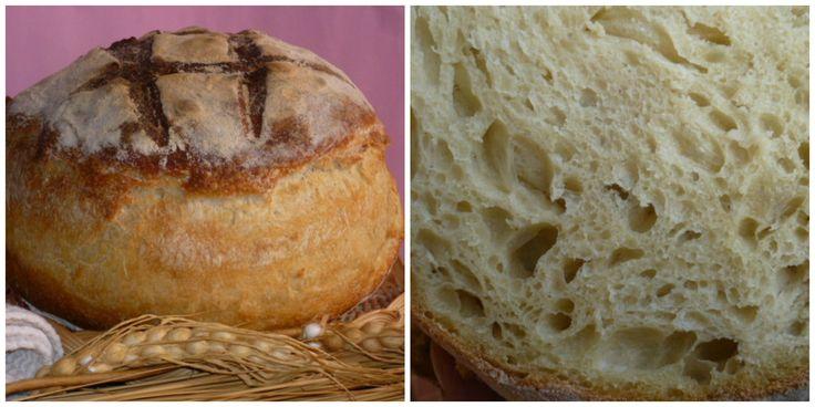 pane di altamura con semola