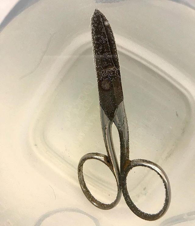 #fms_dayoff giving grandmas old scissors a spa treatment. See the bubbles?  #fmspad #scissors #spa #spatreatment #dayoff #bubbles #grandma #tool #oldtool