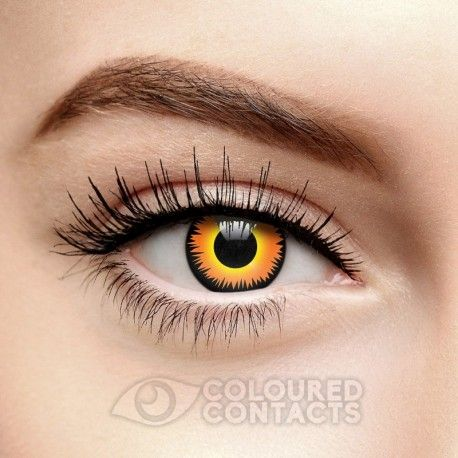 The Orange Werewolf Coloured Contact Lenses in 1 Year. For realistic wolf eyes try these yellow coloured contacts, perfect for Halloween and fancy dress.