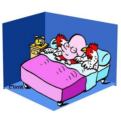"""""""Se coucher avec les poules"""" .... C'est se coucher tôt."""