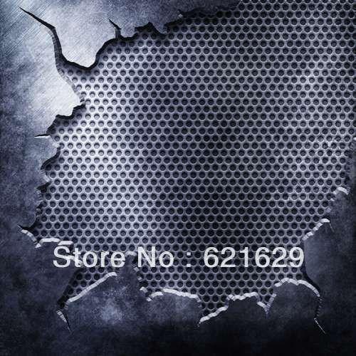 Ретикуло металла 10'x10 'ср Компьютерная роспись Scenic Фотография Фон Фотостудия Фон ZJZ-256
