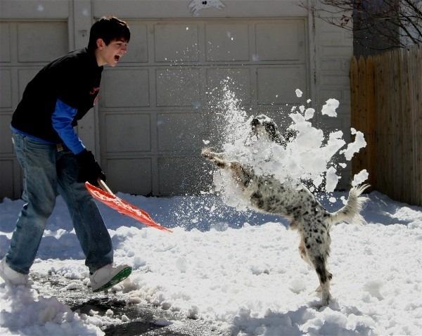 Snow Splash https://contest.thesca.org/snow2012/snow-splash