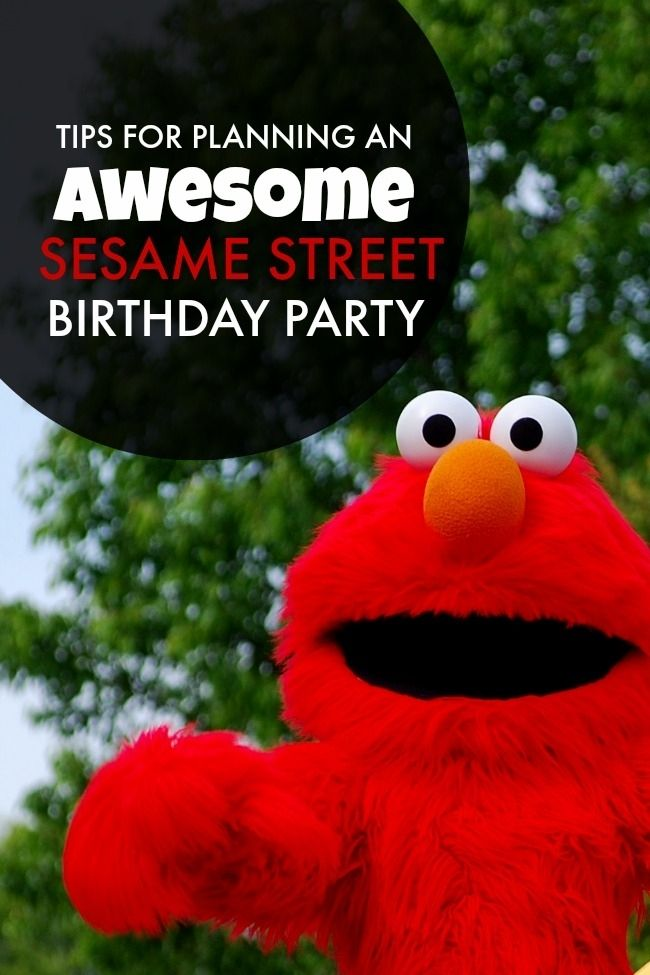 Sesame Street Birthday Party Ideas www.spaceshipsandlaserbeams.com