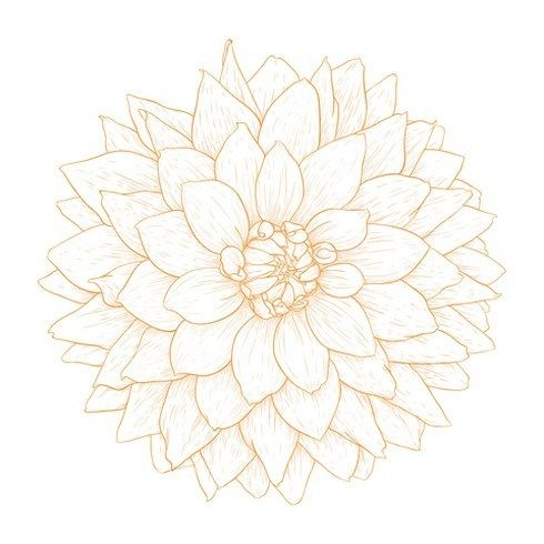 Dahlia Flower Tattoo Awesome Ideas 1 Dahlia Flower Tattoos White Flower Tattoos Flower Tattoo Designs
