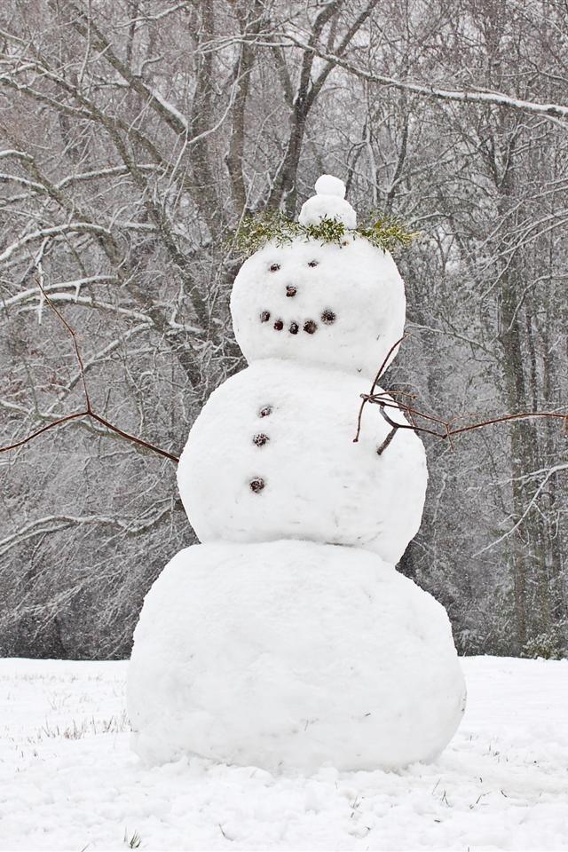 76 best Kardanadam  Snowman images on Pinterest  Christmas