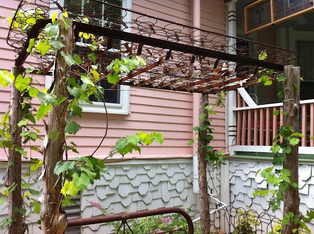 cedar posts and a rusty set of bed springs make a cute arbor
