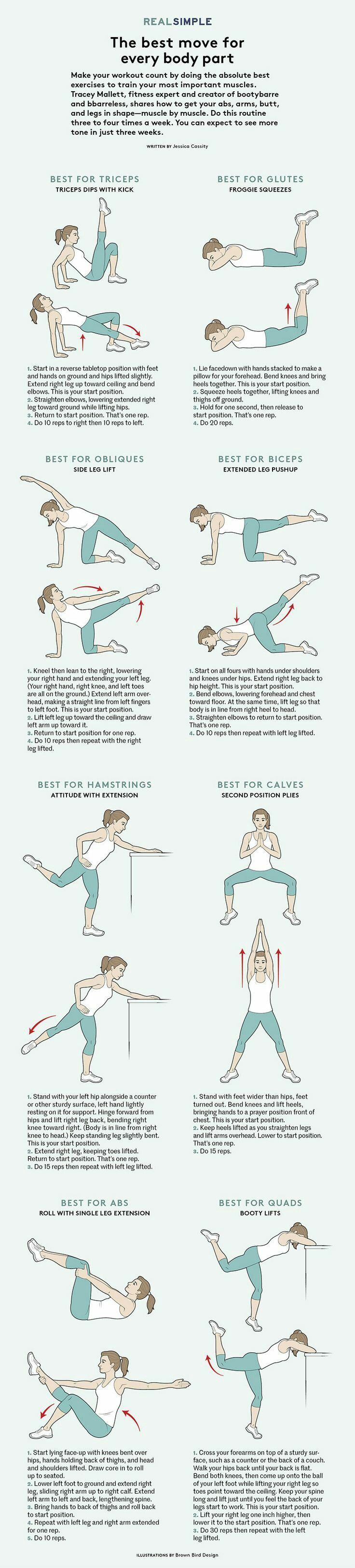 the best move for every body part (fitness)