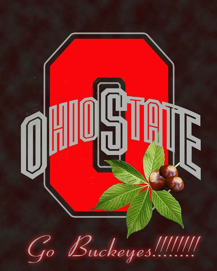 The Ohio State University Buckeyes.
