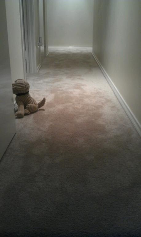 Smartstrand Silk Gentle Essence carpet - Desert star