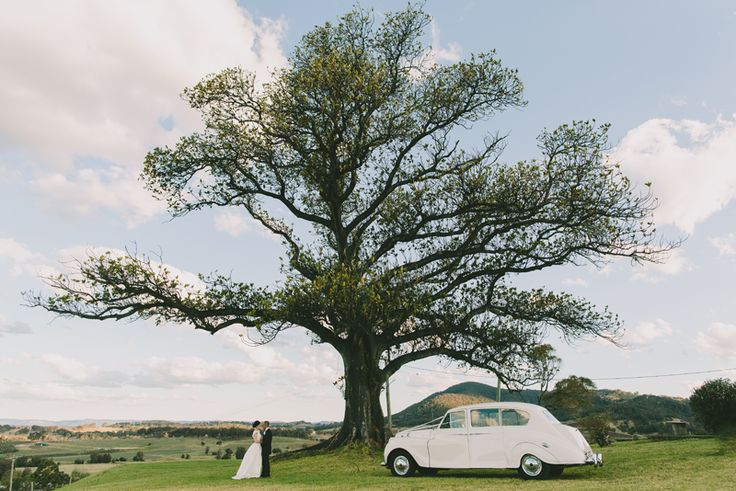 Wedding car photo. Lindemans Hunter Valley Wedding. Image: Cavanagh Photography. http://cavanaghphotography.com.au