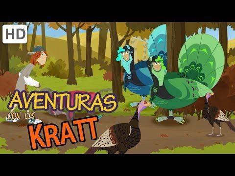 Aventuras con los Kratt - A la Caza de Pavos Salvajes - YouTube