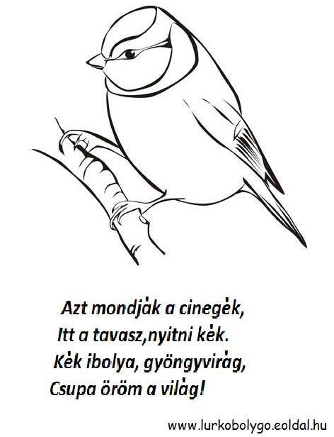cinege.JPG (472×616)