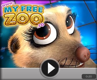 free zoo http://wikimapia.org/26084215/ro/Jocuri-pentru-copii